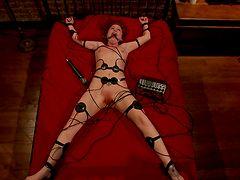 Лучшее видео sasha grey секс фетиш фото в кабинете